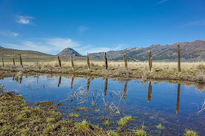 Photograph - Sierra Valley Spring Reflection by Scott McGuire
