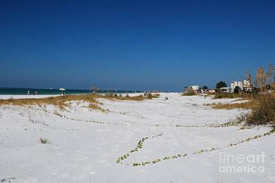Photograph - Siesta Key Beach by Gary Wonning