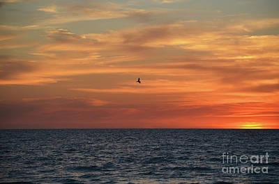 Digital Art - Siesta Key Sunset by Eva Kaufman