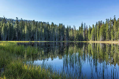 Photograph - Siesta Lake by Belinda Greb
