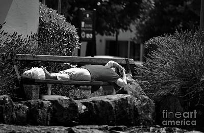 Photograph - Siesta by Michelle Meenawong