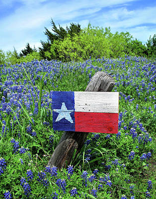 Photograph - Sign If Spring In Texas by David and Carol Kelly