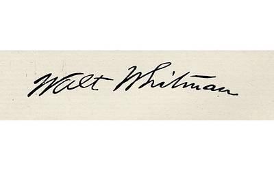 Whitman Drawing - Signature Of Walt Whitman, 1819-1892 by Vintage Design Pics