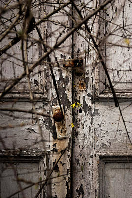 Photograph - Signs Of Life by Melissa Newcomb