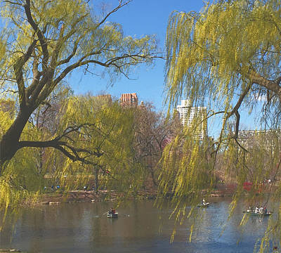 Signs Of Spring In Central Park 4 Art Print