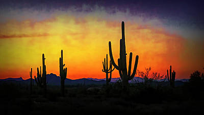 Photograph - Sihouette Sunrise In The Sonoran by Saija Lehtonen