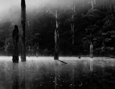 Photograph - Silence 1 by Mihai Florea