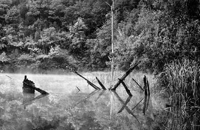 Photograph - Silence 2 by Mihai Florea