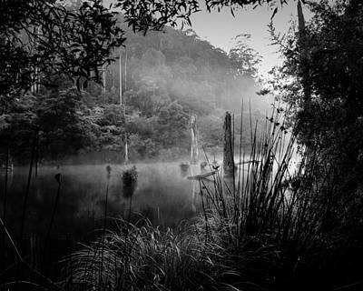 Photograph - Silence 3 by Mihai Florea