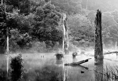 Photograph - Silence 4 by Mihai Florea