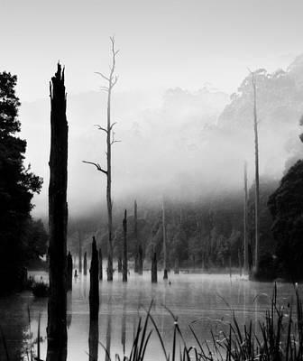 Photograph - Silence 6 by Mihai Florea