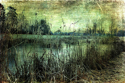 Photograph - Silence By A Pond by Randi Grace Nilsberg