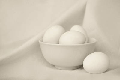 Photograph - Silence - Eggs And Bowl - Still Life by Nikolyn McDonald