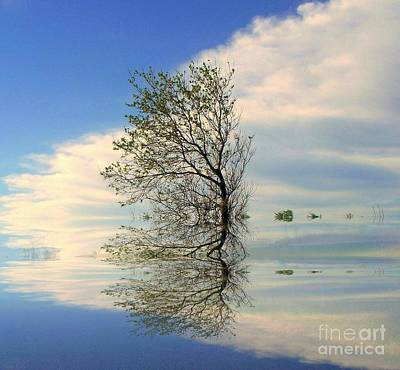 Photograph - Silence by Elfriede Fulda