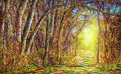 Silence Of A Forest Path Art Print