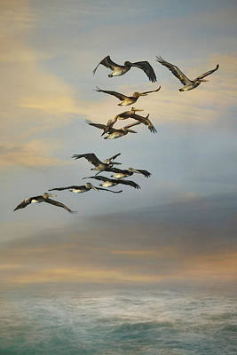 Photograph - Silent Flock by Jai Johnson