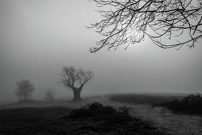 Photograph - Silent Haze by Nick Bywater