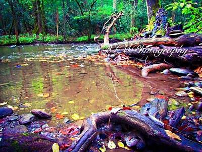 Smokey Mountains Painting - Silent River  by Brianna Mills