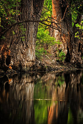 Photograph - Silent River by Scott Read