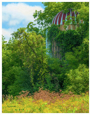 Photograph - Silent Silo On Nottleson Road by Trey Foerster