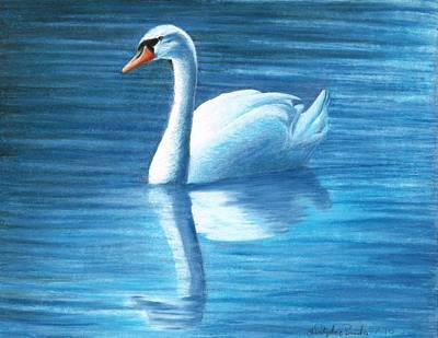 Nature Drawing - Silent Tranquility by Christopher Brooks