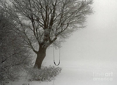 Photograph - Silently Swinging by Jan Piller