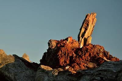 Photograph - Siletz Bay Sentinel by Jerry Sodorff