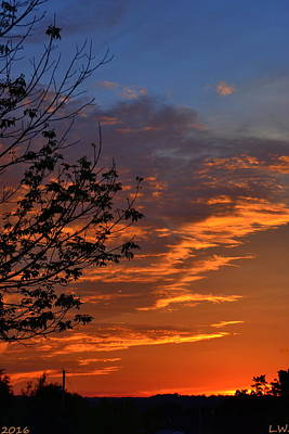 Photograph - Silhouett Sunrise by Lisa Wooten