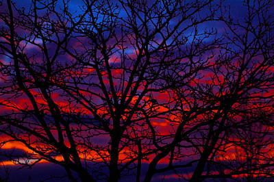 Photograph - Silhouette 1 by Paul Marto