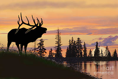 Photograph - Silhouette Elk Lake Sunset Reflections by Dale Jackson