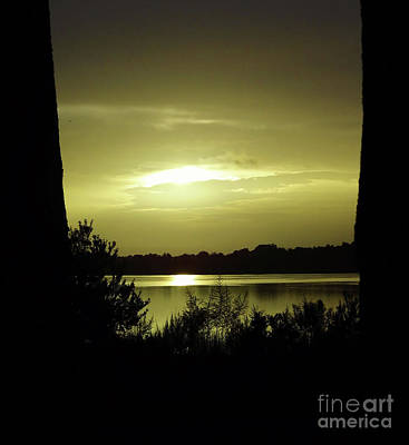 Photograph - Silhouette Morning by D Hackett
