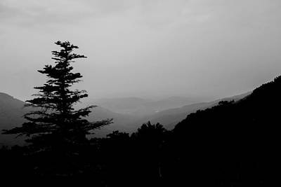 Photograph - Silhouette Of A Tree In The Mountains by Kelly Hazel