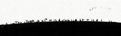 Photograph - Silhouette  Sandhills Crane Birds On Hill by Dan Friend