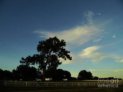 Photograph - Silhouette Skyline by D Hackett