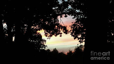 Photograph - Fall Silhouette Sunset by Donna Brown