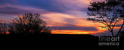 Photograph - Silhouette Sunset by Lena Auxier