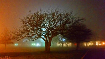 Silhouette Tree Original by Michael Rucker