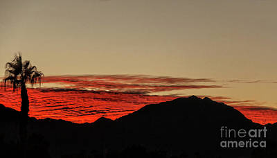 Photograph - Silhouette View by Robert Bales