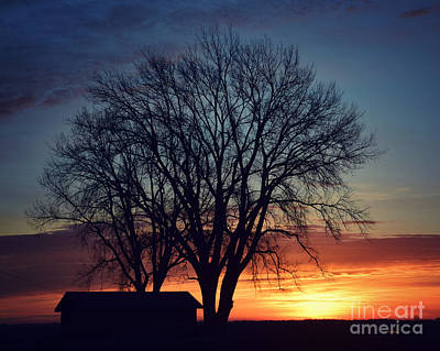 Photograph - Silhouettes At Dawn by Kathy M Krause