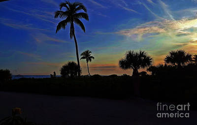 Photograph - Silhouettes At Sunset by Patti Whitten