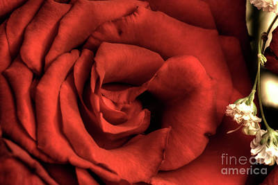 Photograph - Silk by Adrian LaRoque