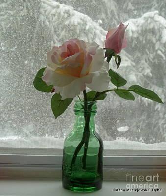 Folkartanna Photograph - Silk Rose by Anna Folkartanna Maciejewska-Dyba