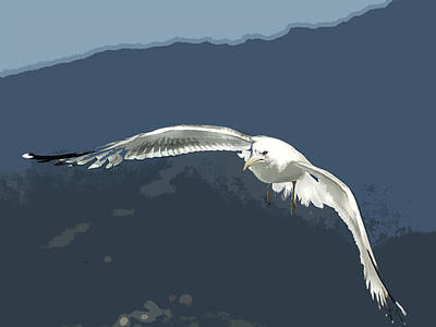 Flying Seagull Painting - Silk Screen Posterized Seagull by Elaine Plesser
