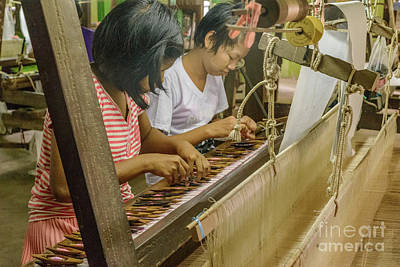 Photograph - Silk Weaving 4 by Werner Padarin
