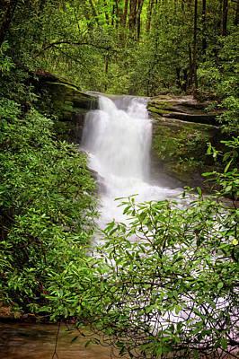 Photograph - Silken Forest Cascades by Debra and Dave Vanderlaan