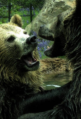 Digital Art - Silly Bears by Holly Ethan