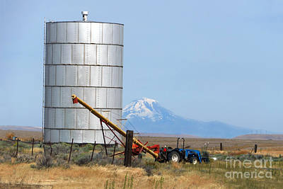 Photograph - Silo And Mount Hood, Oregon by Catherine Sherman