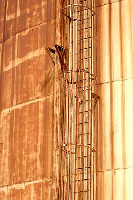 Photograph - Silo Ladder by Jill Reger