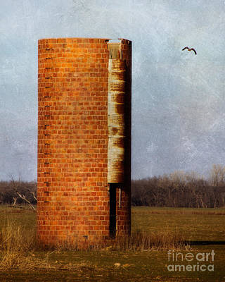 Photograph - Silo by Lana Trussell