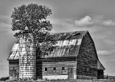 Photograph - Silo Tree Black And White by Kristie  Bonnewell